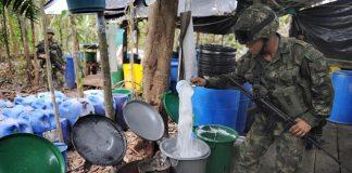 Colombia reduce producción de coca