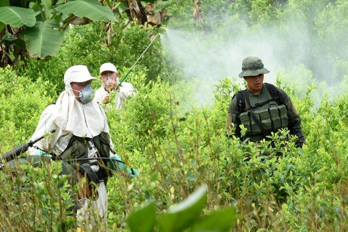 Naciones Unidas y Colombia firman acuerdo para luchar contra cultivo de coca