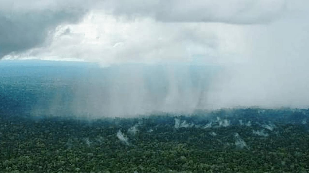 Fotos y video: Lluvia en el Amazonas, ¿cierto o falso?