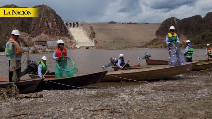 Naufragó plan especial de tierras en El Quimbo 1 30 marzo, 2020