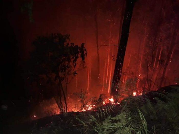 Zona boscosa del sur del Huila afectada por incendio 1 10 abril, 2020
