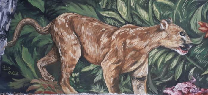 El mural que expone la fauna silvestre del Huila 1 27 mayo, 2020