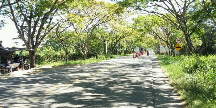 Se reactivarán obras en la vía Santana-Mocoa-Neiva 1 27 mayo, 2020