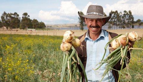 Campesinos también serán beneficiados con pago de prima 1 13 julio, 2020