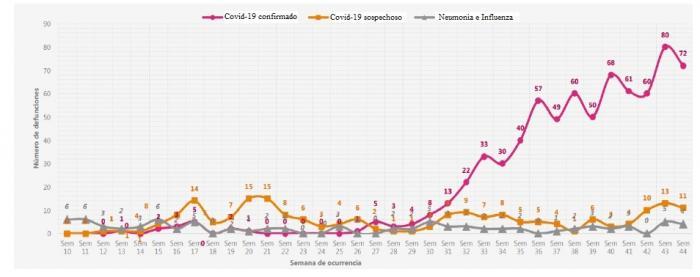 Cada mes mueren 116 huilenses por covid-19 7 24 noviembre, 2020